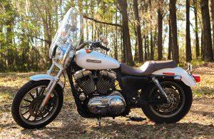 Arleen's-bike-roadtofreedom98.com